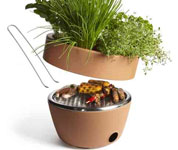 BBQ and Herb Planter - cool idea for your balcony