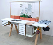 Living Kitchen - utilize efficiently the natural resources in home