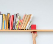 Hold On Tight Shelf by Colleen Whiteley